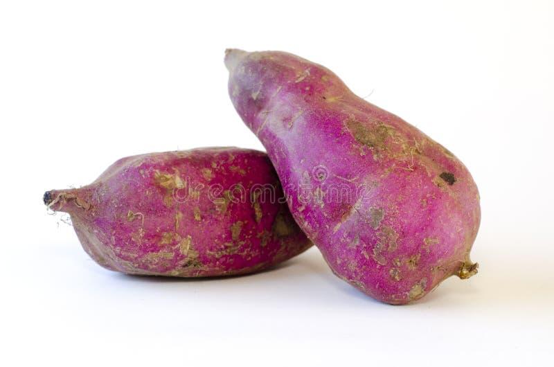 Γλυκιά πατάτα στοκ εικόνες