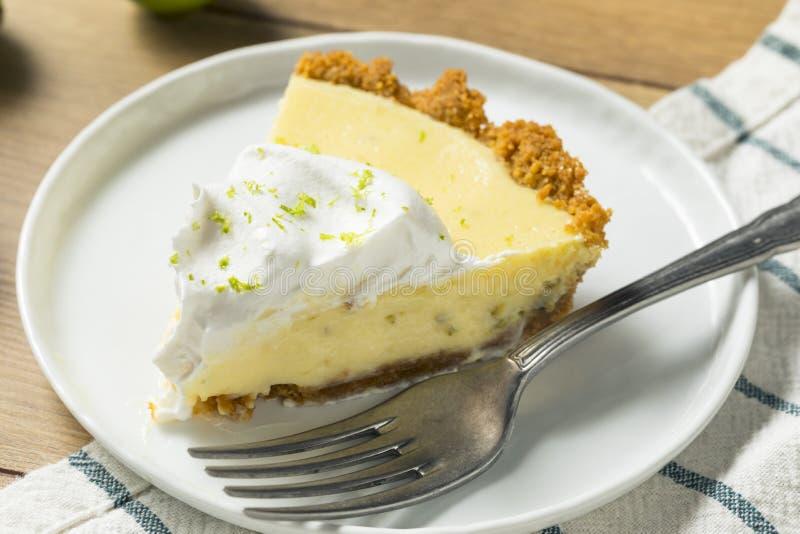 Γλυκιά σπιτική βασική πίτα ασβέστη στοκ φωτογραφίες