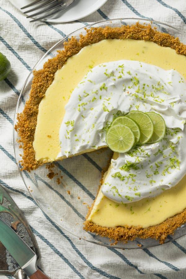 Γλυκιά σπιτική βασική πίτα ασβέστη στοκ εικόνες