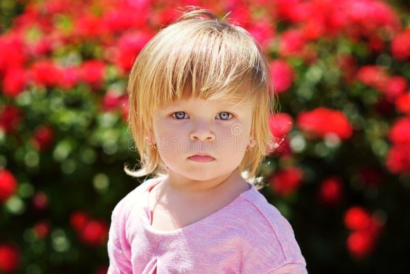 Γλυκό μωρό στοκ φωτογραφίες