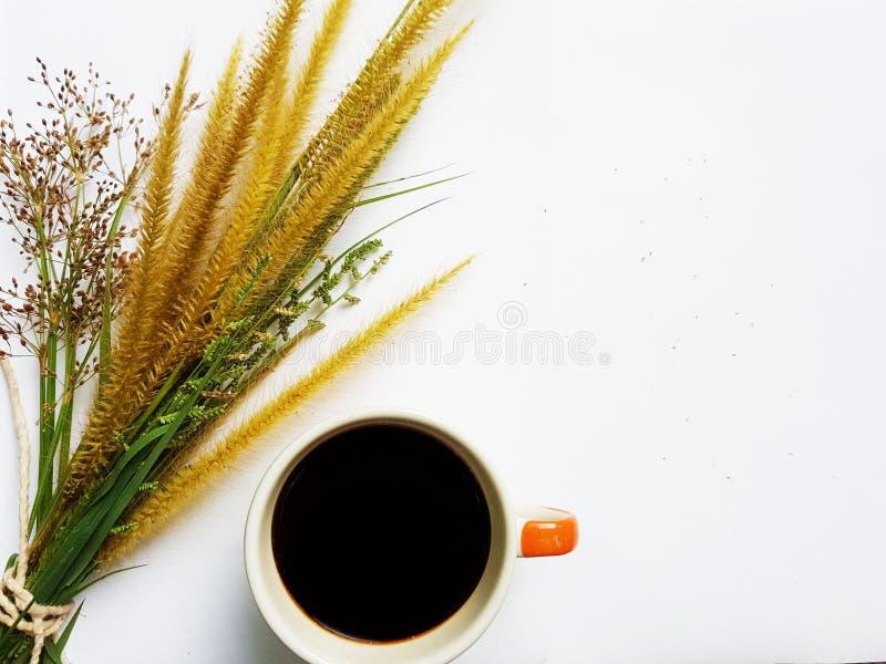 Γλυκό πρωί με τον καφέ στοκ εικόνα με δικαίωμα ελεύθερης χρήσης