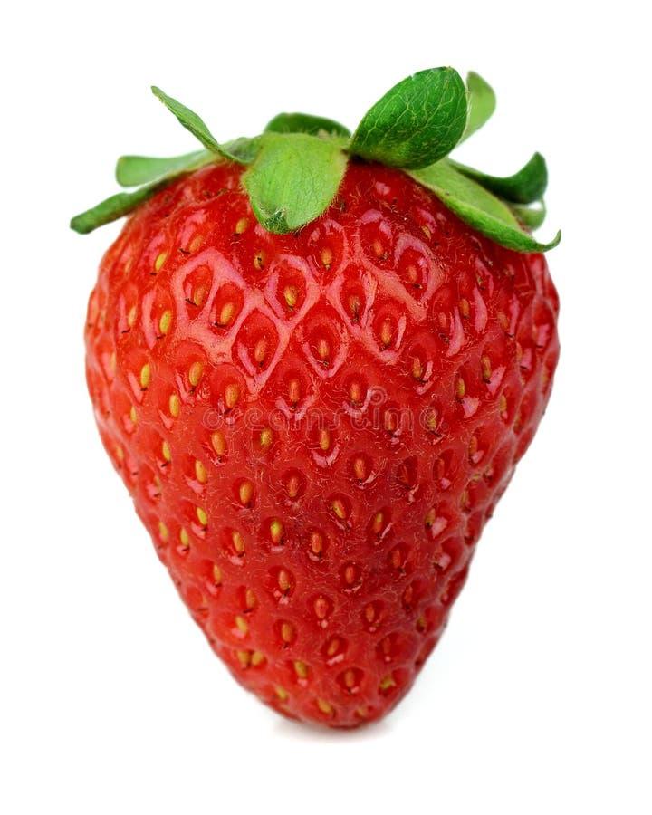 γλυκό φραουλών στοκ εικόνα
