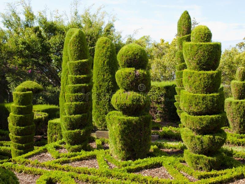 Γλυπτά φυτού στοκ φωτογραφία με δικαίωμα ελεύθερης χρήσης