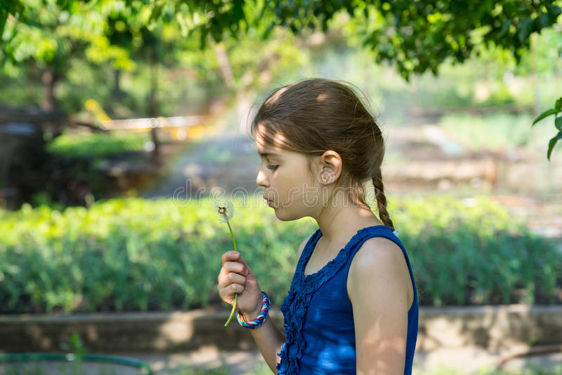 Γνήσιο κορίτσι που κρατά μια εύθραυστη συγκεχυμένη πικραλίδα στοκ φωτογραφία με δικαίωμα ελεύθερης χρήσης