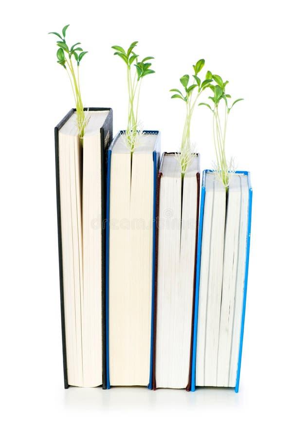 γνώση έννοιας βιβλίων στοκ φωτογραφίες με δικαίωμα ελεύθερης χρήσης