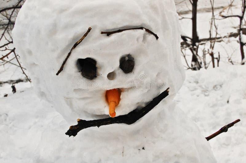 Γοητευτικό πορτρέτο του χειροποίητου χιονανθρώπου στοκ φωτογραφία με δικαίωμα ελεύθερης χρήσης