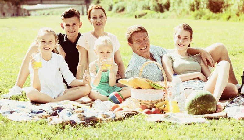 Γονείς με τα παιδιά που έχουν το πικ-νίκ στοκ εικόνα