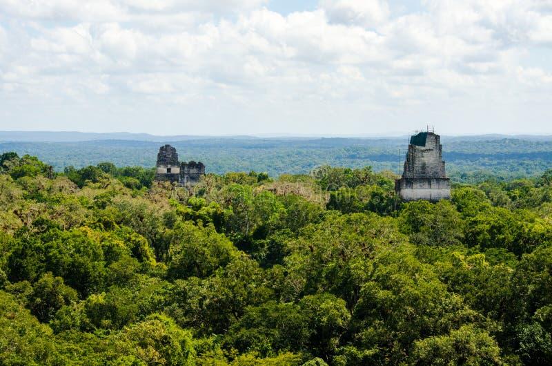 Γουατεμάλα tikal στοκ εικόνα με δικαίωμα ελεύθερης χρήσης