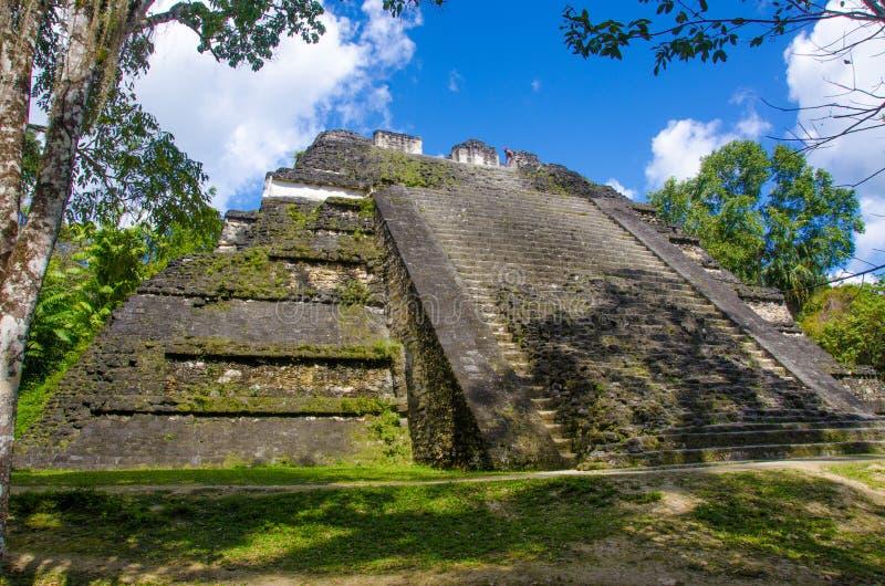 Γουατεμάλα tikal στοκ φωτογραφία