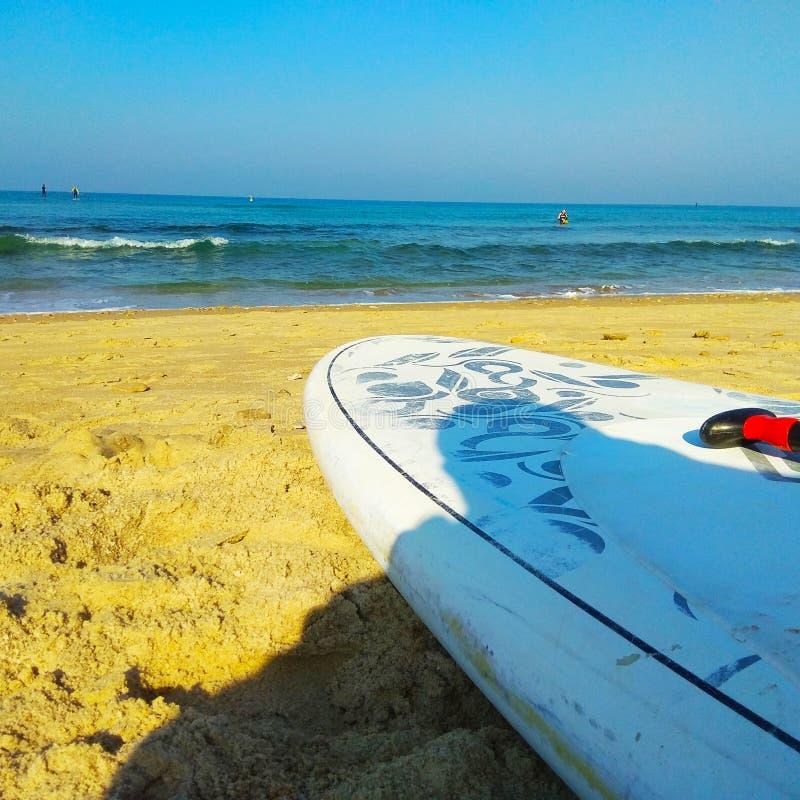 ΓΟΥΛΙΑ και θάλασσα στοκ εικόνα