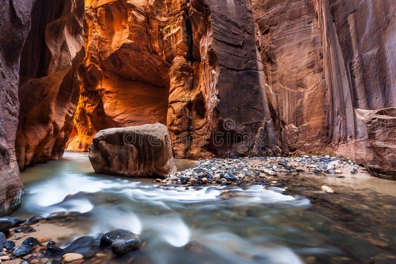 Γουώλ Στρητ στενεύει, εθνικό πάρκο Zion, Γιούτα στοκ φωτογραφίες
