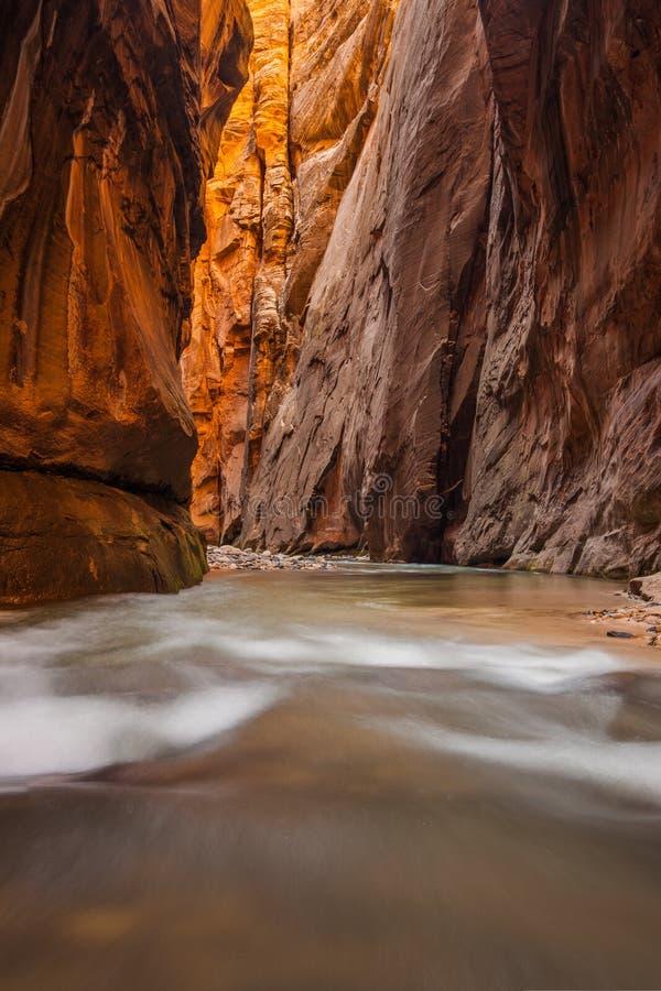 Γουώλ Στρητ, στενεύει, εθνικό πάρκο Zion, Γιούτα στοκ εικόνα με δικαίωμα ελεύθερης χρήσης