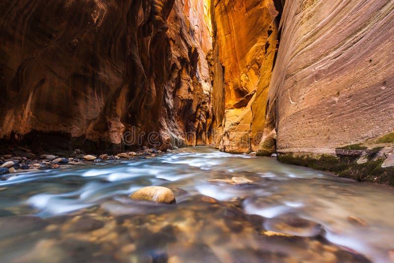 Γουώλ Στρητ στενεύει το ίχνος, εθνικό πάρκο Zion στοκ φωτογραφία με δικαίωμα ελεύθερης χρήσης
