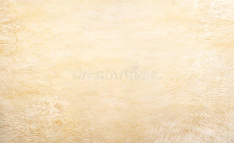 γούνα ανασκόπησης στοκ εικόνες