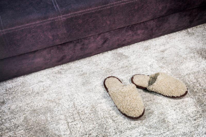 Γούνινες εγχώριες παντόφλες καφετιές στον τάπητα στοκ φωτογραφία με δικαίωμα ελεύθερης χρήσης