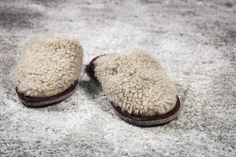 Γούνινες εγχώριες παντόφλες καφετιές στον τάπητα στοκ φωτογραφία