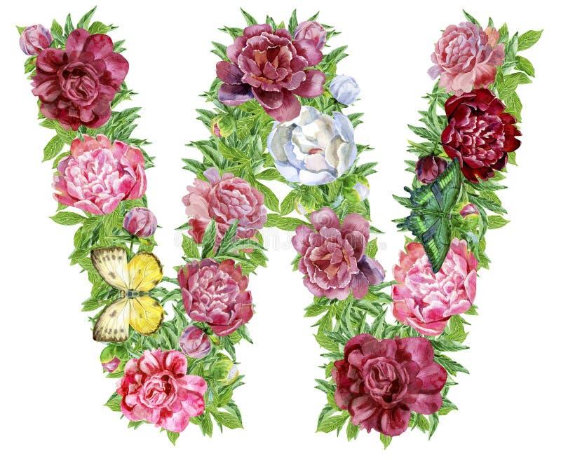 Γράμμα W των λουλουδιών watercolor ελεύθερη απεικόνιση δικαιώματος