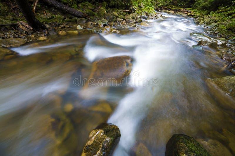 Γρήγορα διατρέχοντας του άγριου πράσινου δασικού ποταμού με το κρύσταλλο - σαφές ομαλό μεταξωτό νερό που πέφτει από τις μεγάλες υ στοκ εικόνες με δικαίωμα ελεύθερης χρήσης