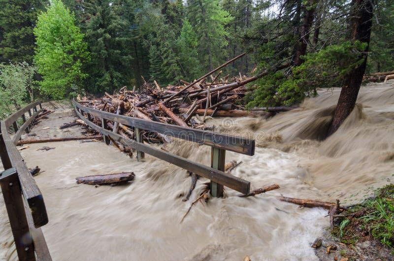 Γρήγορα να πλημμυρίσει και κούτσουρα και συντρίμμια ενάντια στη για τους πεζούς γέφυρα στοκ φωτογραφία με δικαίωμα ελεύθερης χρήσης