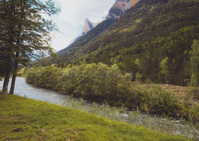 Γρήγορα ρέοντας ποταμός στη μέση του δάσους στο εθνικό πάρκο Ordesa, Ισπανία στοκ εικόνες