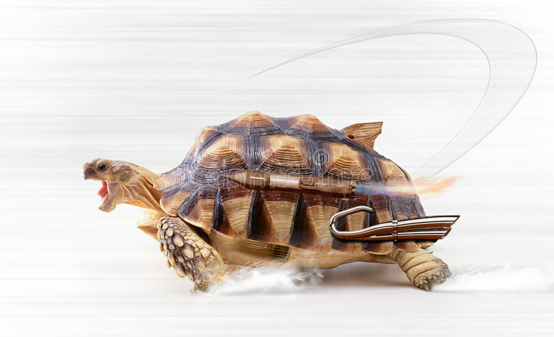 γρήγορη χελώνα διανυσματική απεικόνιση