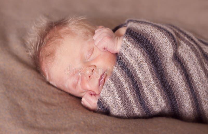 Γρήγορος κοιμισμένος στοκ εικόνες με δικαίωμα ελεύθερης χρήσης