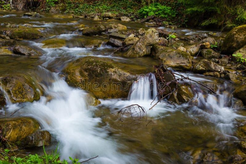 Γρήγορος ποταμός βουνών, άνοιξη Carpathians, Ουκρανία στοκ φωτογραφίες