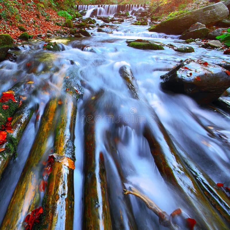 Γρήγορος ποταμός βουνών το φθινόπωρο στοκ φωτογραφίες