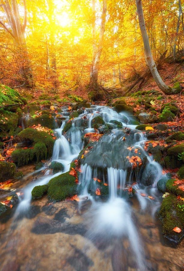 Γρήγορος ποταμός βουνών το φθινόπωρο στοκ φωτογραφίες με δικαίωμα ελεύθερης χρήσης