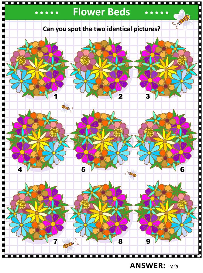 Γρίφος εικόνων με τα κρεβάτια λουλουδιών διανυσματική απεικόνιση