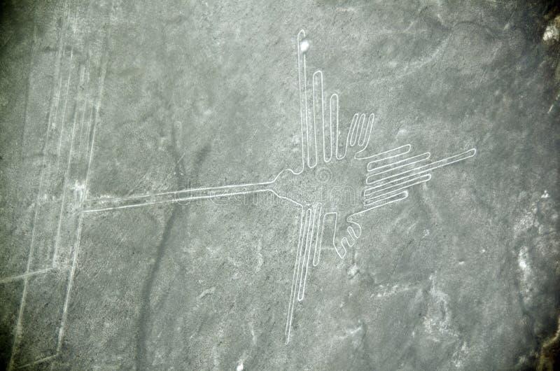 Γραμμές Nazca, το κολίβριο, εναέρια άποψη, Περού στοκ φωτογραφίες με δικαίωμα ελεύθερης χρήσης