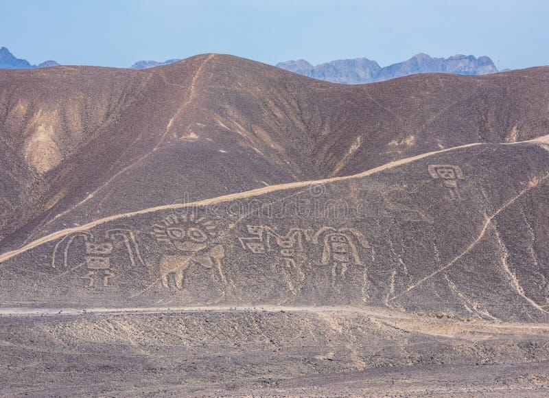 Γραμμές Palpa και Geoglyphs, Περού στοκ εικόνες