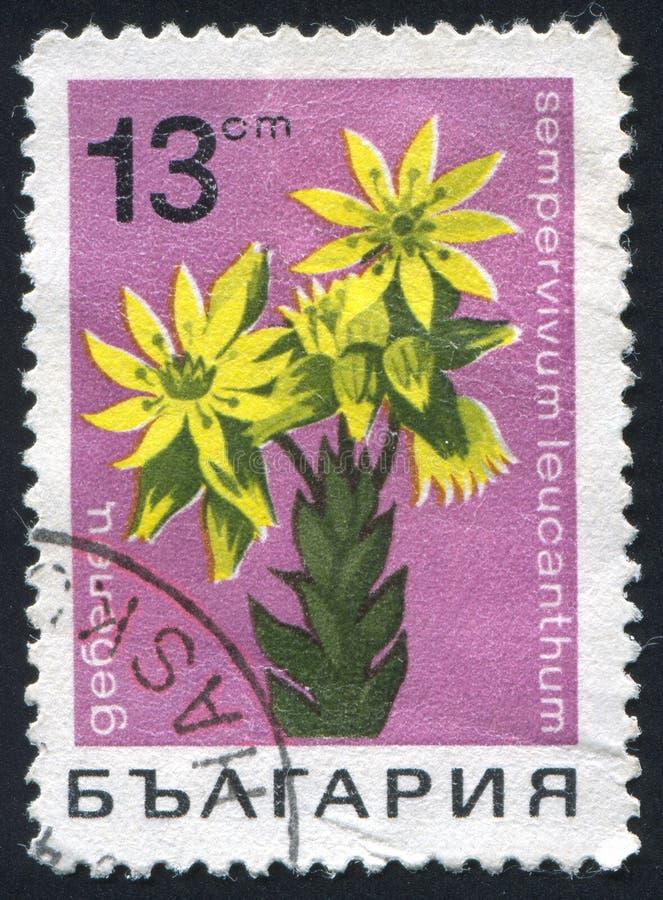 Γραμματόσημο απεικόνιση αποθεμάτων