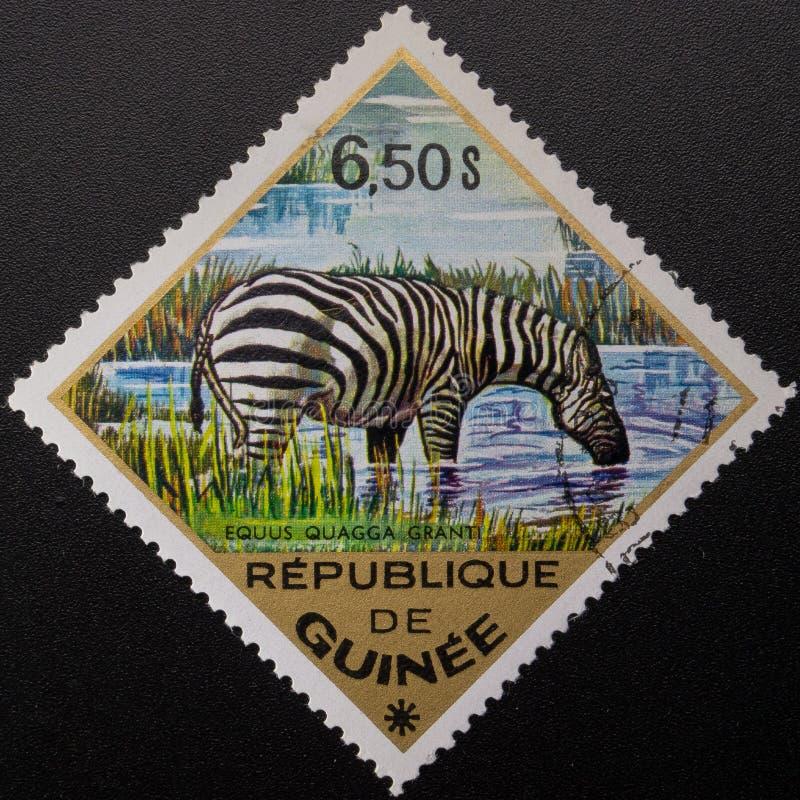 Γραμματόσημο 1975 Δημοκρατία της Γουινέας r στοκ εικόνες με δικαίωμα ελεύθερης χρήσης