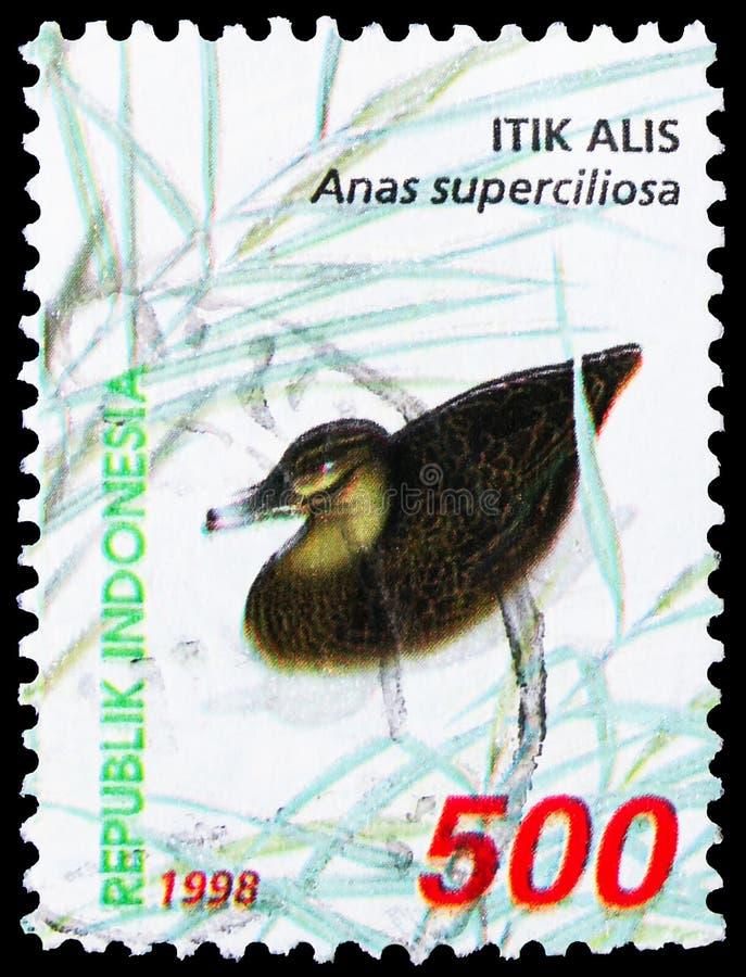 Γραμματόσημο τυπωμένο στην Ινδονησία δείχνει την Μέλαν Πάπια του Ειρηνικού (Anas superciliosa), την Waterfowl serie, περίπου το 1 στοκ φωτογραφία με δικαίωμα ελεύθερης χρήσης