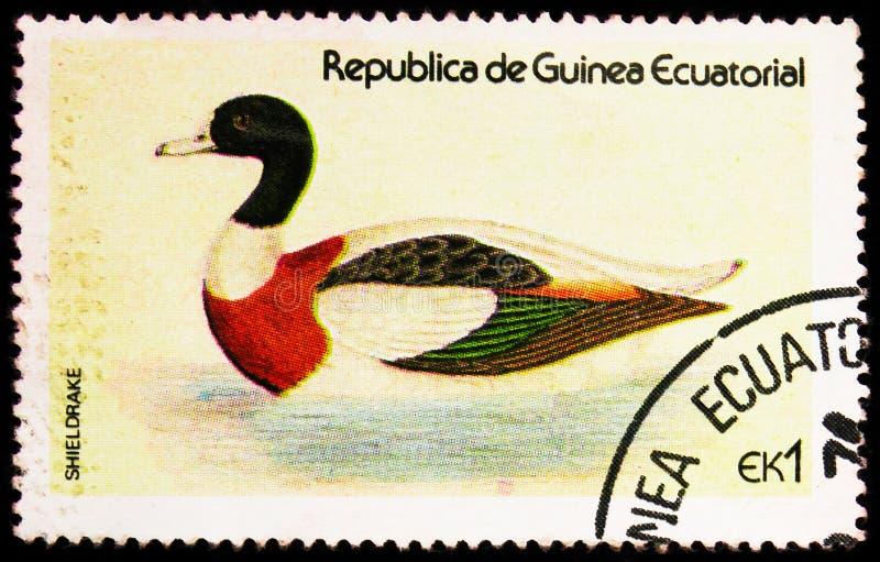 Γραμματόσημο τυπωμένο στην Ισημερινή Γουινέα δείχνει το Sheldrake (Tadorna tadorna), το Waterfowl serie, περίπου το 1978 στοκ φωτογραφία με δικαίωμα ελεύθερης χρήσης