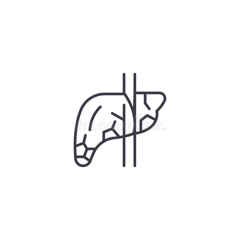 Γραμμική έννοια εικονιδίων παγκρεάτων Διανυσματικό σημάδι γραμμών παγκρεάτων, σύμβολο, απεικόνιση διανυσματική απεικόνιση