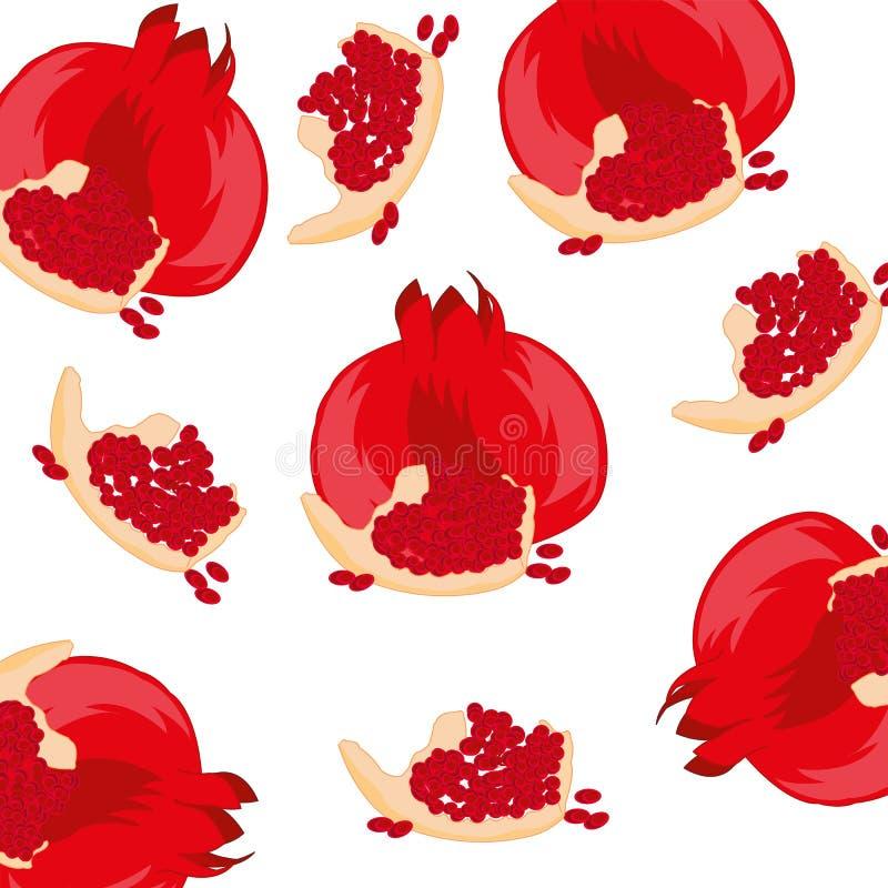 Γρανάτης φρούτων στο λευκό διανυσματική απεικόνιση