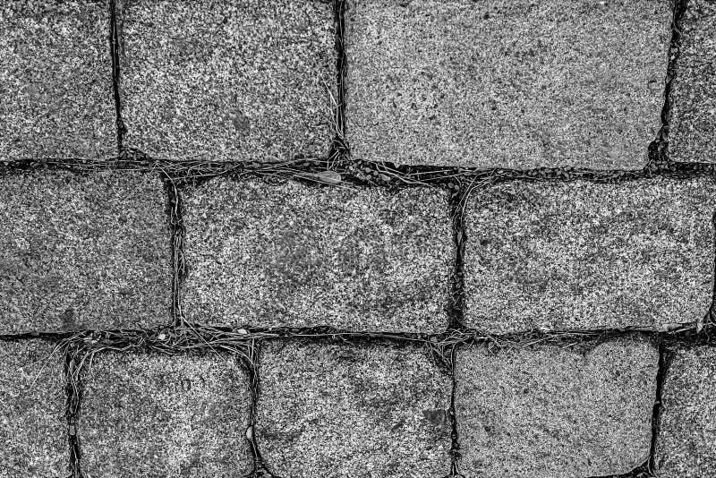 Γρανίτη υποβάθρου ορθογώνια φραγμών γκρίζα τονισμένη σχεδίων αστική περιοχή βάσεων πάρκων διαδρομής βάσεων ύφους δύσκαμπτη μονοχρ στοκ φωτογραφίες