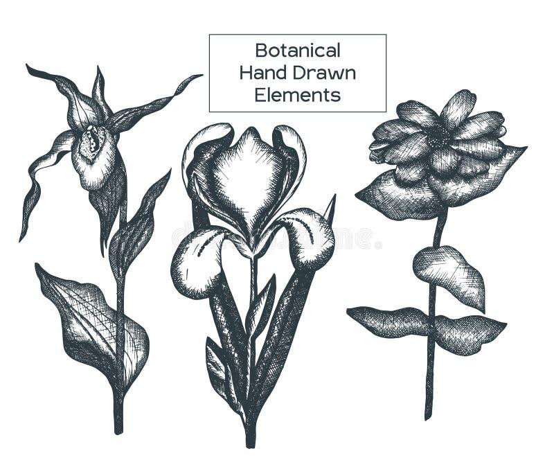Γραπτά στοιχεία λουλουδιών περιλήψεων στοκ εικόνα με δικαίωμα ελεύθερης χρήσης