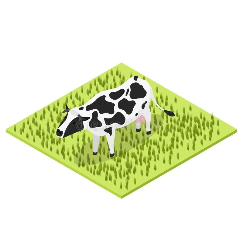 Γραπτή αγελάδα Isometric όψη ελεύθερη απεικόνιση δικαιώματος