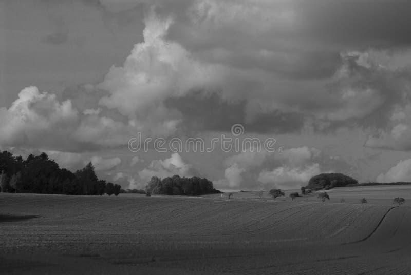 Γραπτή φωτογραφία τοπίων με τα δέντρα, τομέας, ουρανός Γερμανία στοκ εικόνα με δικαίωμα ελεύθερης χρήσης