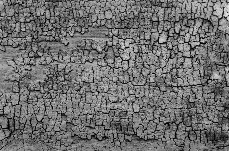 Γραπτό παλαιό ξύλινο υπόβαθρο σύστασης στοκ φωτογραφία με δικαίωμα ελεύθερης χρήσης