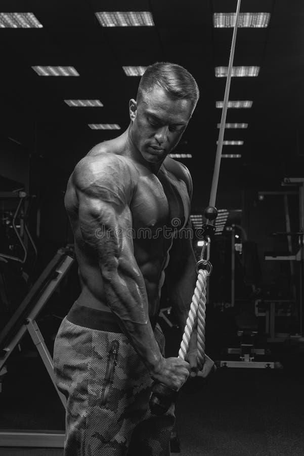 Γραπτό πορτρέτο όμορφο αθλητικό να κάνει bodybuilder στοκ εικόνες