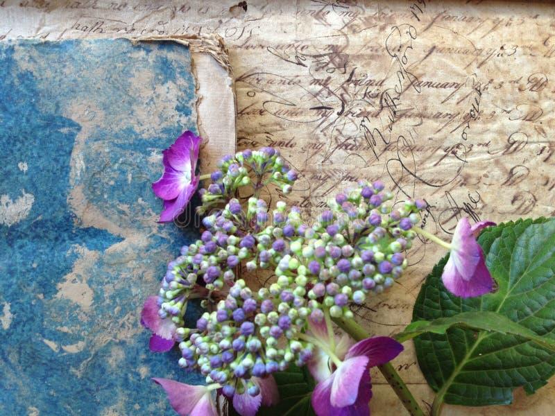 Γραφή από το δέκατο όγδοο αιώνα με τα λουλούδια και το βιβλίο στοκ εικόνα