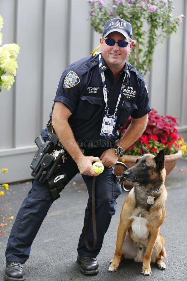 Γραφείο Κ-9 διέλευσης NYPD αστυνομικός και βελγικός ποιμένας Κ-9 Wyatt που παρέχει την ασφάλεια στο εθνικό κέντρο αντισφαίρισης κ στοκ φωτογραφία