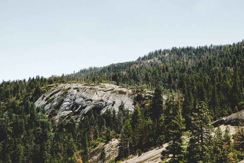 Γραφικά τοπία φθινοπώρου του εθνικού πάρκου Yosemite, ΗΠΑ στοκ φωτογραφία με δικαίωμα ελεύθερης χρήσης