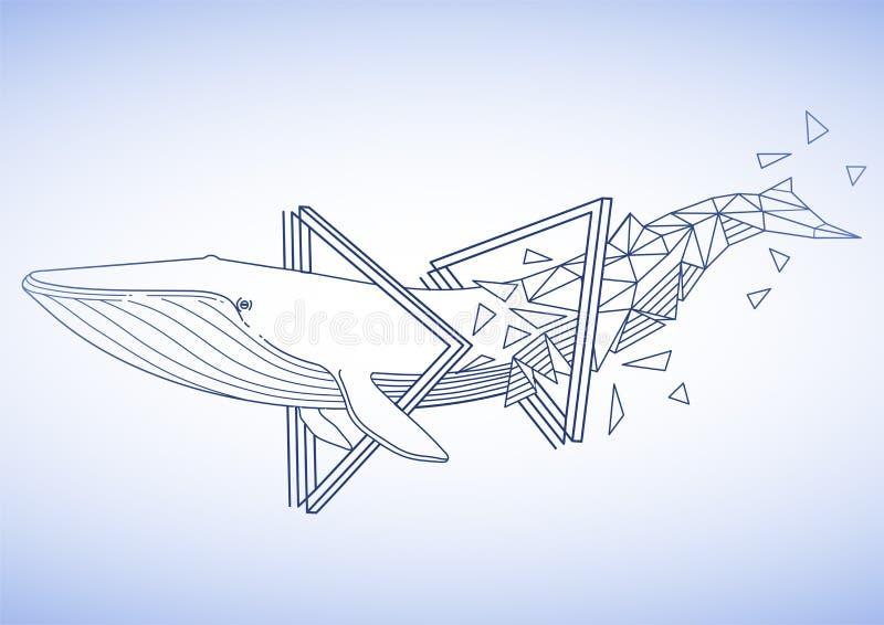 Γραφική γαλάζια φάλαινα διανυσματική απεικόνιση