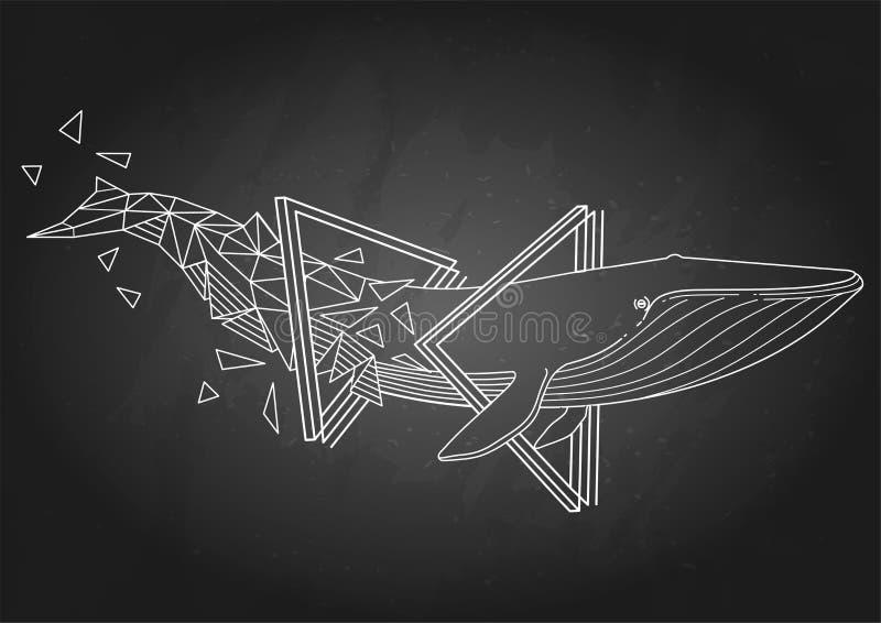 Γραφική γαλάζια φάλαινα ελεύθερη απεικόνιση δικαιώματος