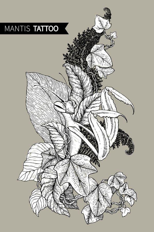 Γραφική διακοσμητική εικόνα του Mantis Το γραμμικό σχέδιο που απομονώνεται σε ένα καφετί υπόβαθρο επίσης corel σύρετε το διάνυσμα ελεύθερη απεικόνιση δικαιώματος